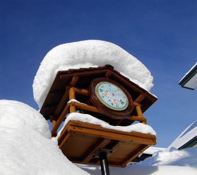 小鳥のエサ台のガーデンプレート⇒バラは雪の中です