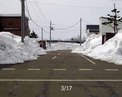 3/17 道路は雪解け
