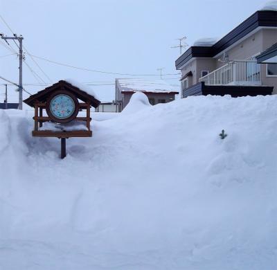 雪中のローズミンタラ