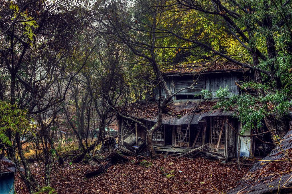 #01-IMG_9626_7_8_tonemapped_ruinscat