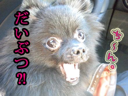 daibutu-!.jpg