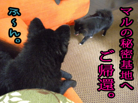 himitukichi01.jpg