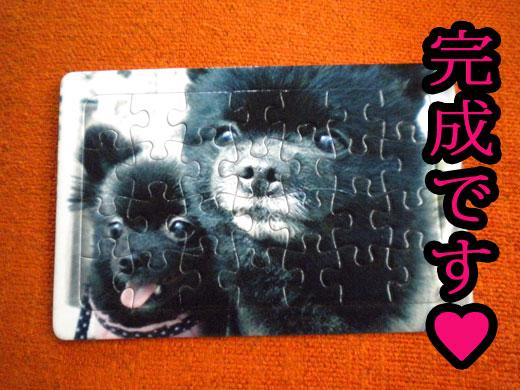 puzzle03.jpg