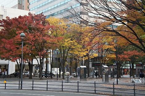 晩秋の横浜201211