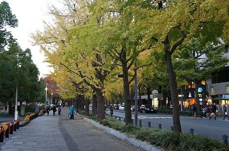 晩秋の横浜201216
