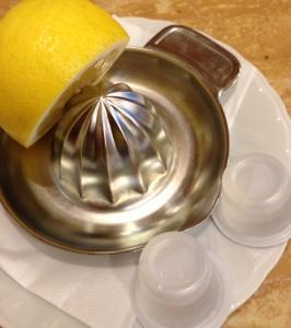 シュベール生レモンスカッシュレモン