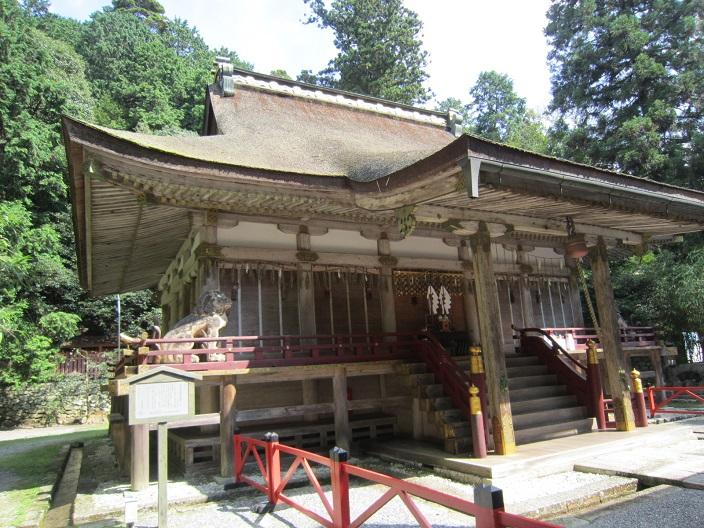 日吉神社 西本宮 本殿