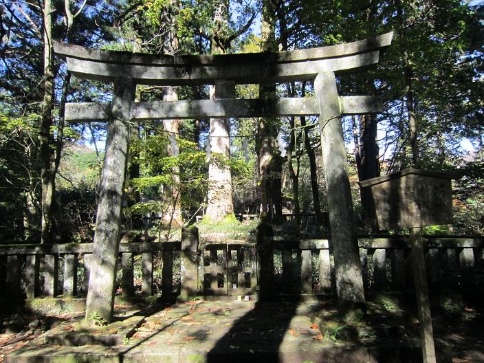 瀧尾神社三本杉