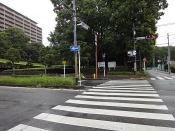 横断歩道を渡ると行田公園が見えてきます。