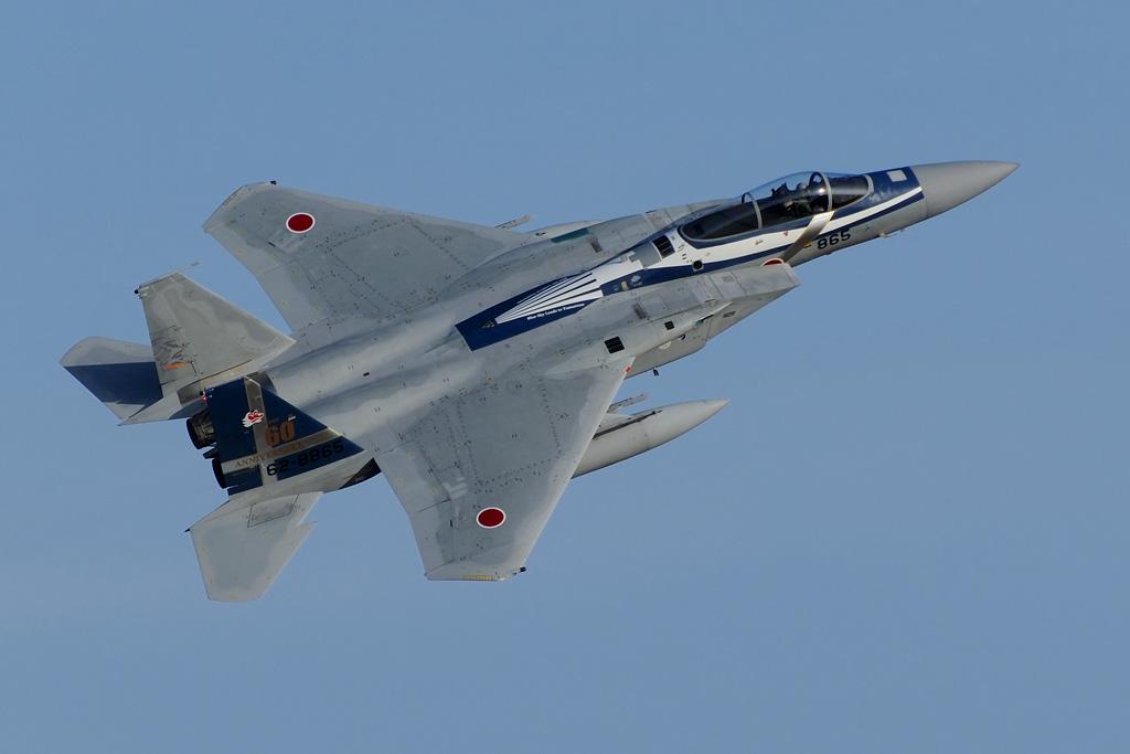 航空自衛隊創設60周年 築城基地 第304飛行隊 記念塗装機