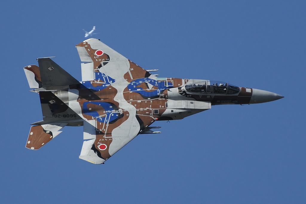 飛行教導群 F-15DJ