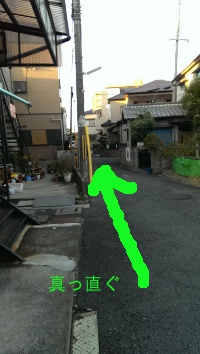 IMAG0330.jpg