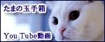 動画バナーのコピー
