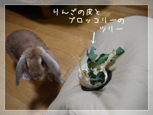 20121224155256df9.jpg
