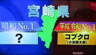 ガメラ:NHKの番組「ミュージックポートレート」 …