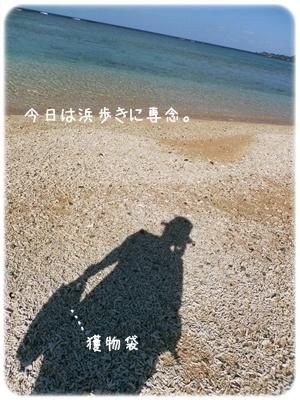2013_01200018.jpg