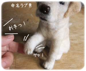 2013_03150005.jpg