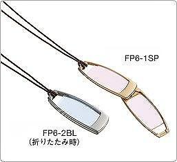 FP6.jpg