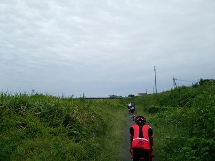 20140920_momonoki.jpg