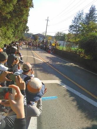 20141019_race14.jpg