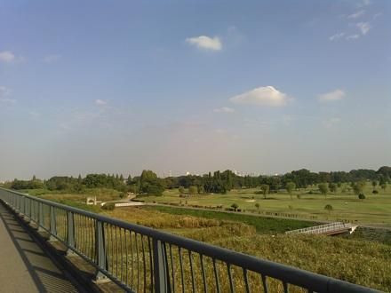 20141025_arasai4.jpg