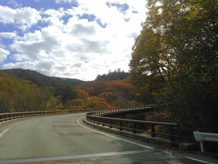 20141026_yanagisawa4.jpg