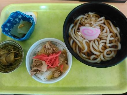 20141103_lunch.jpg