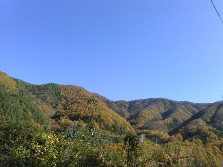 20141103_misaka2.jpg