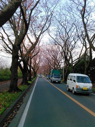 20141130_kaigundoro.jpg