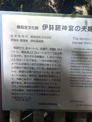 izanagijingu5-H261027.jpg