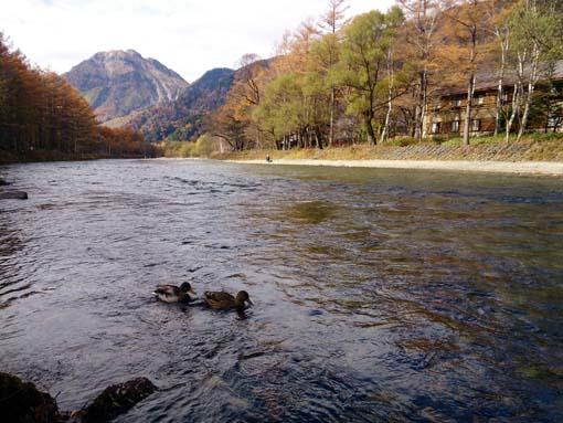 kamikochi3-H261026.jpg